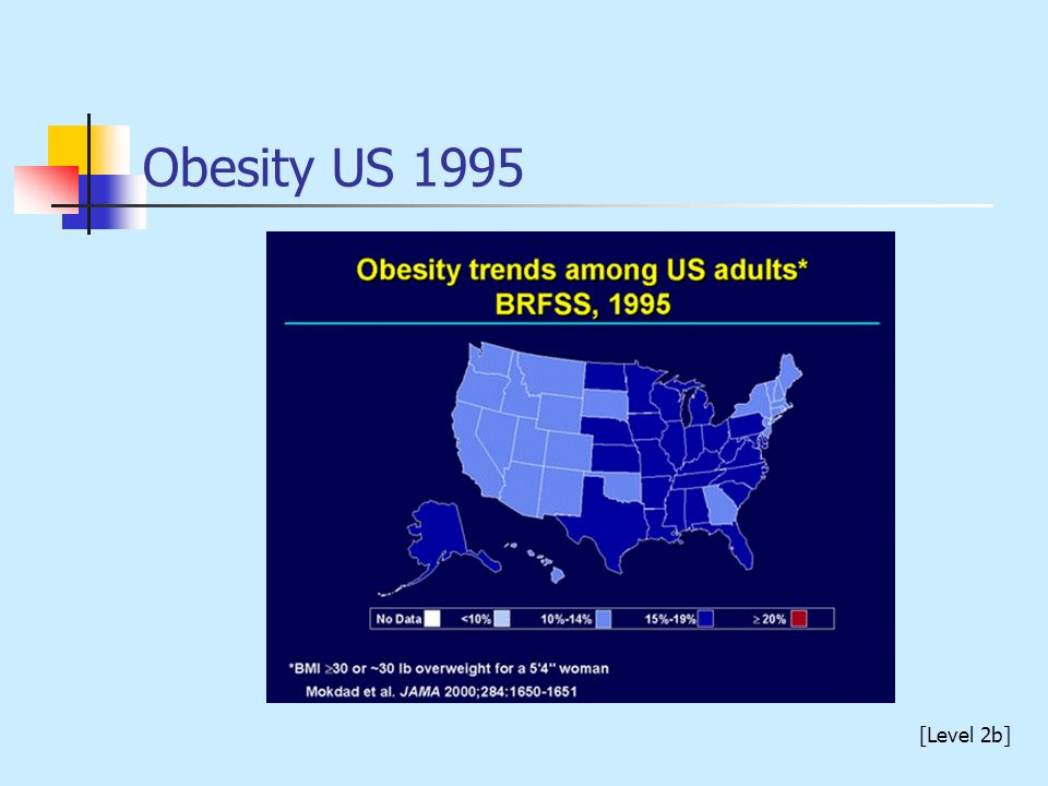 Obesity US 1995 [Level 2b]